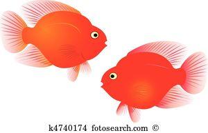 Parrotfish Clipart Illustrations. 19 parrotfish clip art vector.