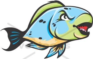 Wild Parrot Fish.