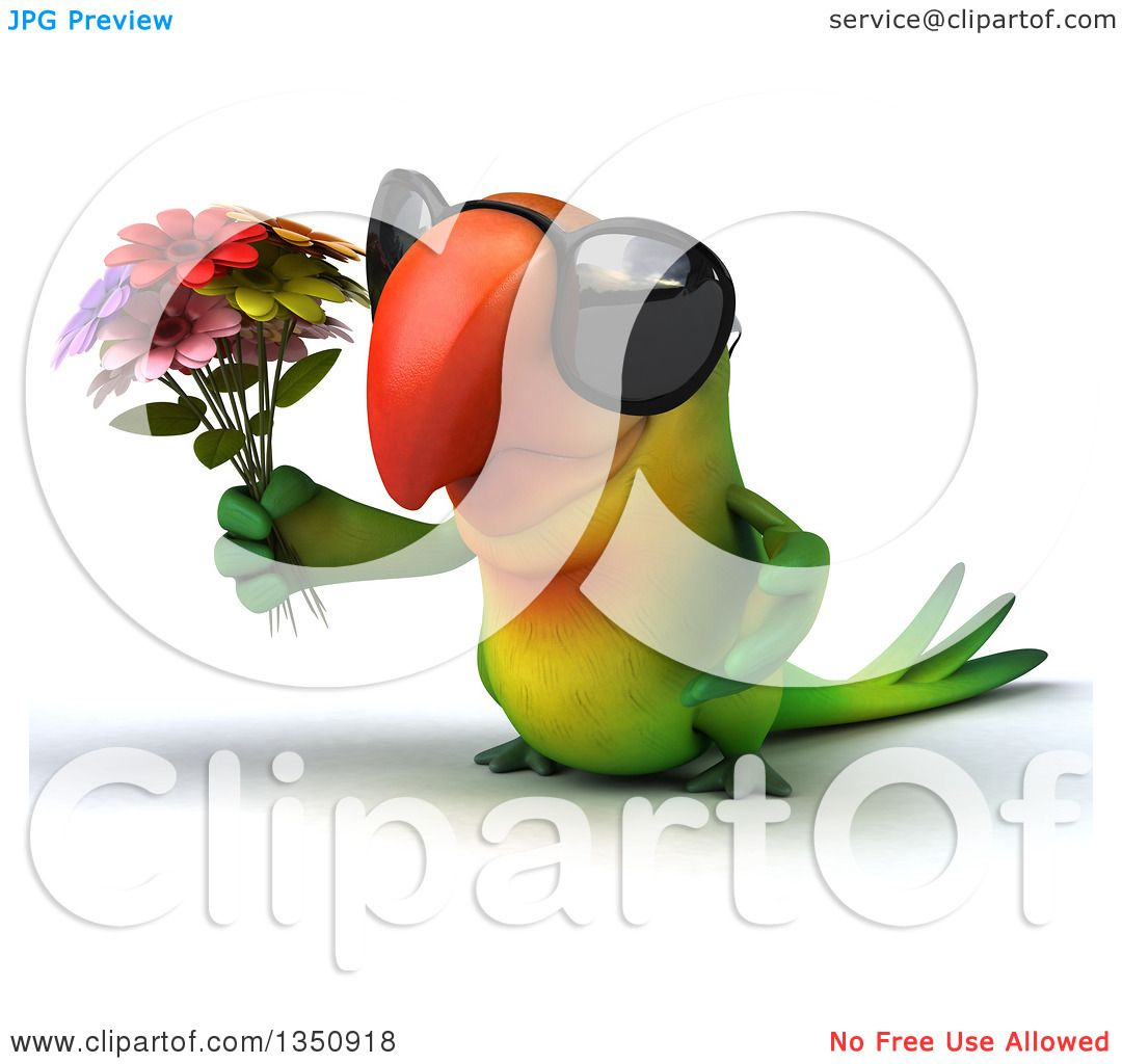 Clipart of a 3d Green Macaw Parrot Wearing Sunglasses and Holding.