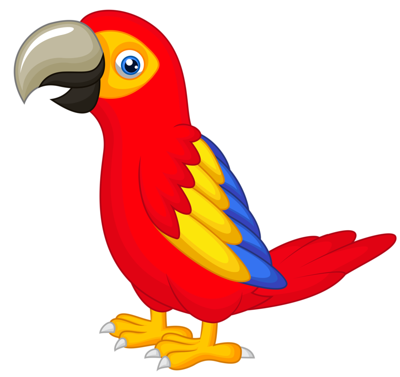 Parrot Bird Clipart at GetDrawings.com.