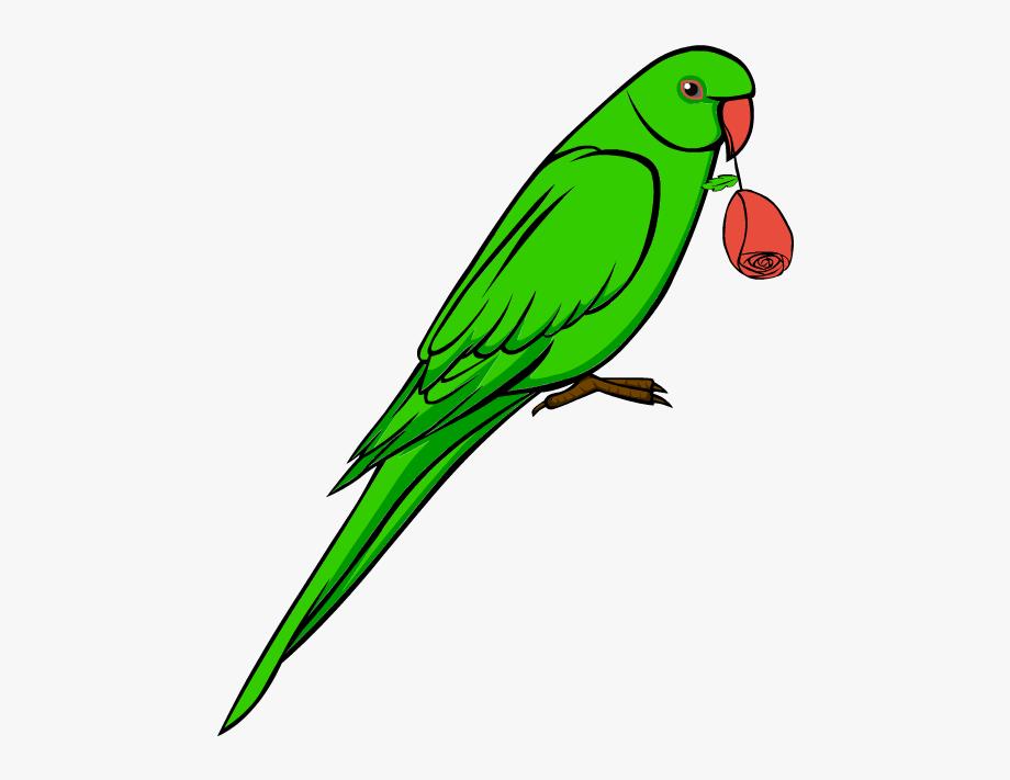 Clip Art Love Bird Parrot Symbol Symbolic Feelings.