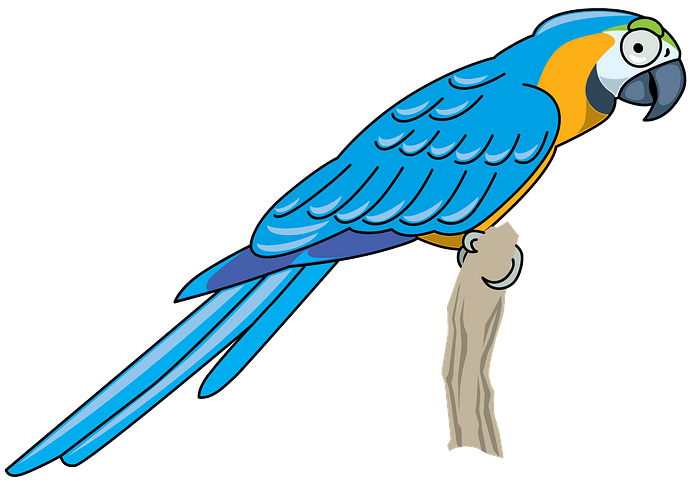 Parrot clipart. Free download..