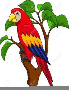 Free Pirate Parrot Clipart.