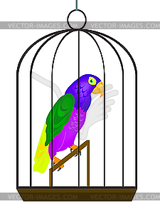 Parrot in cage.