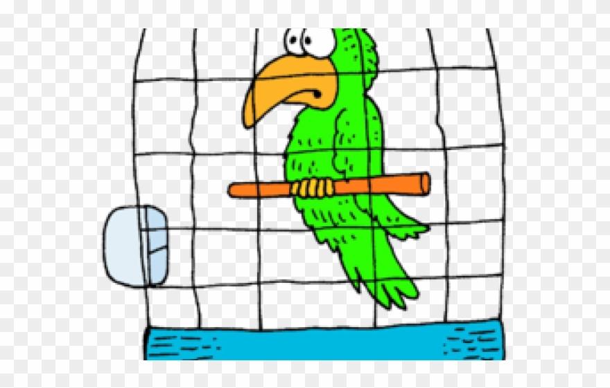 Cage Clipart Parrot.