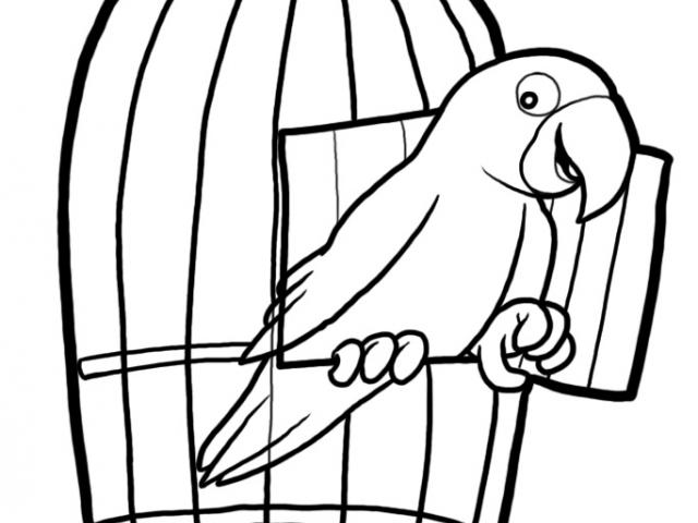 Free Cage Clipart, Download Free Clip Art on Owips.com.