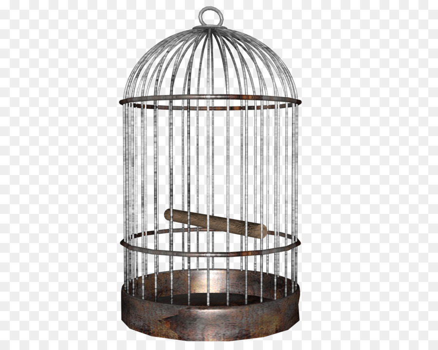 Download bird cage clipart Birdcage.