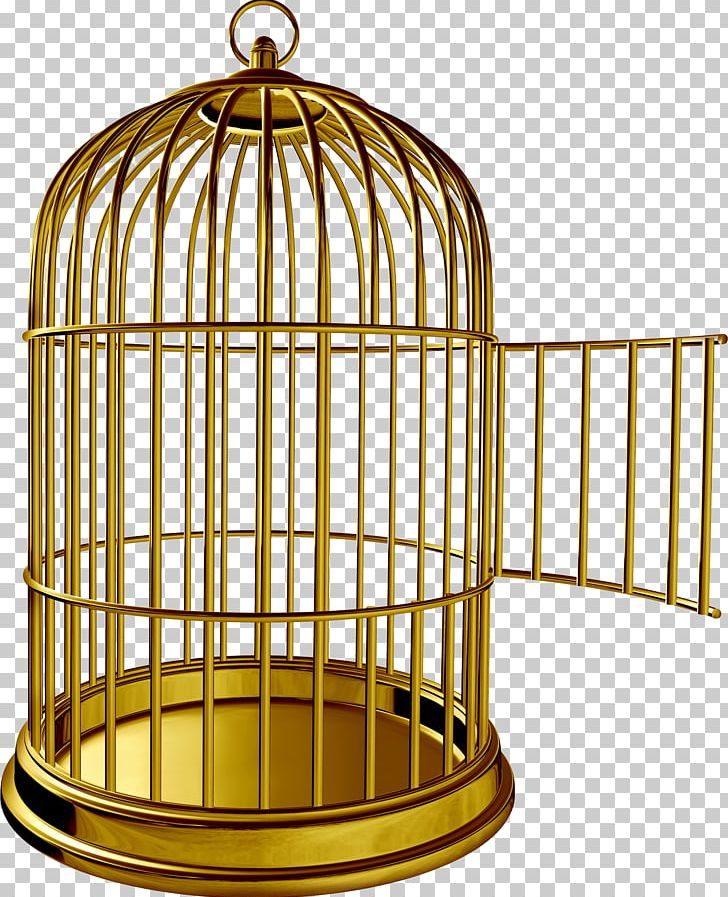 Birdcage Parrot PNG, Clipart, Animals, Bird, Bird Cage.