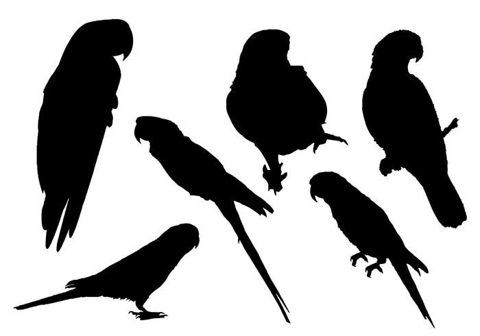 Free Parrot Silhouette Vector.