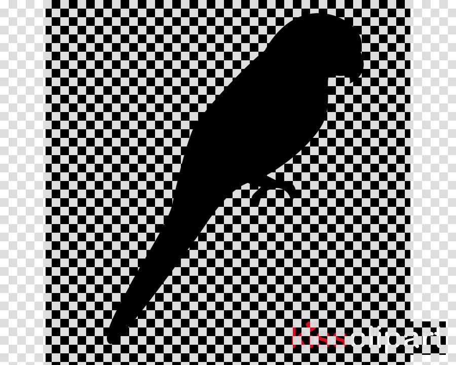 bird beak parrot tail silhouette clipart.