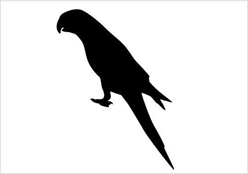 Parrot Silhouette Vector Download Parrot Vectors Silhouette.