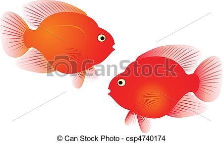 Parrotfish Illustrations and Stock Art. 22 Parrotfish illustration.