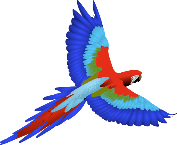 Tropical Parrot Clipart.