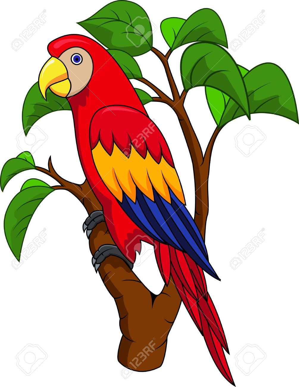 Jungle parrot clipart.