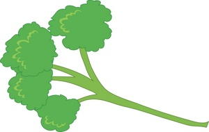 Parsley 20clipart.