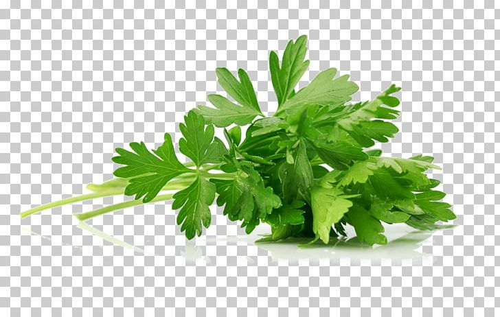 Parsley Asian Cuisine Hummus Herb Spice PNG, Clipart, Asian.