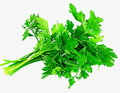 Download Free png Parsley Png.
