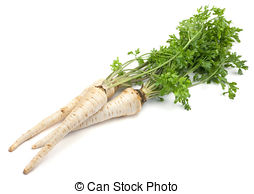 Parsley Stock Photo Images. 177,583 Parsley royalty free pictures.