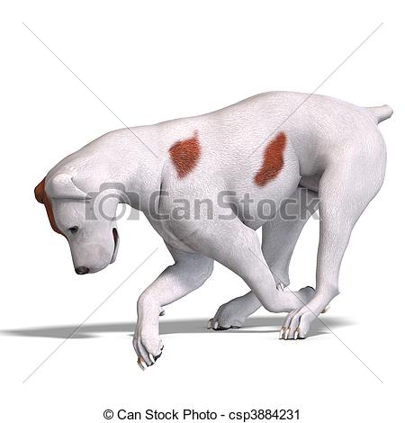 Clipart of Parson Russel Terrier Dog. 3D rendering and shadow over.
