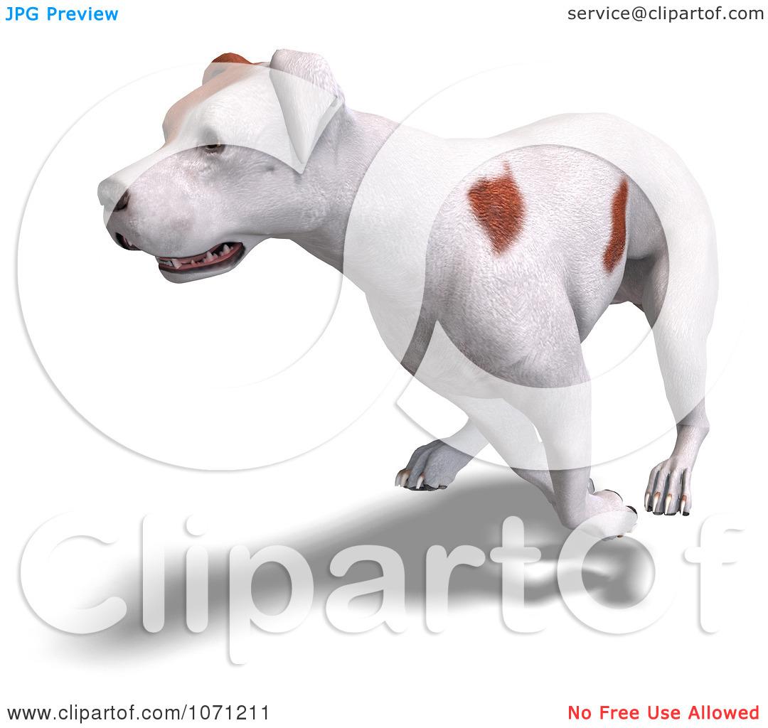 Clipart 3d Parson Russel Terrier Dog Running.