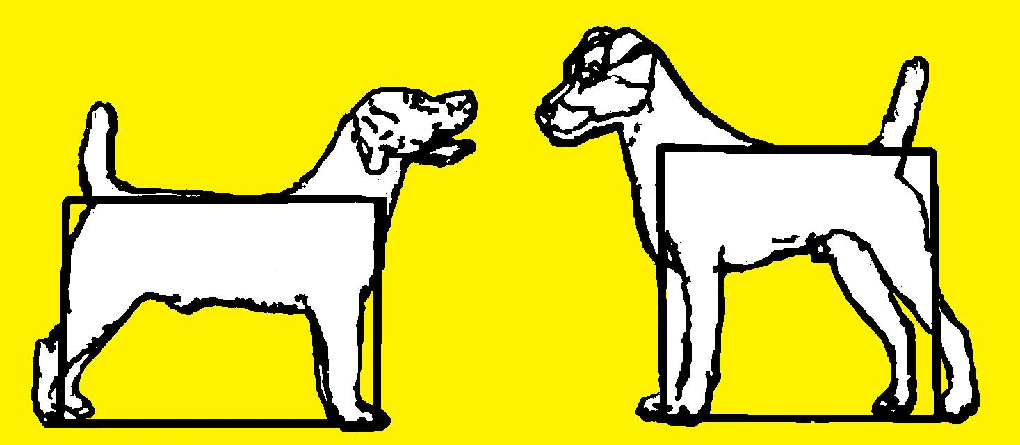 Parson Russell Terrier Clipart.