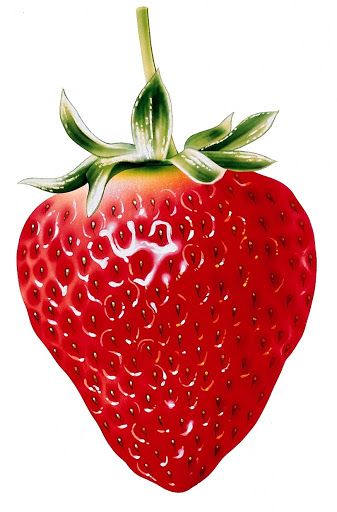 10+ images about Fruit Clip Art and Photos on Pinterest.