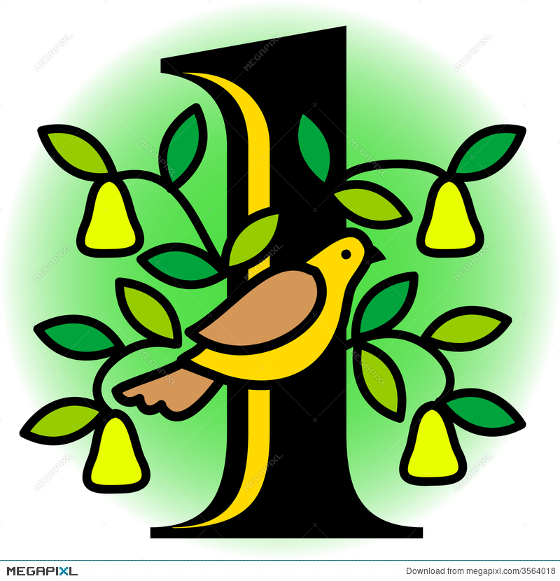 Partridge In A Pear Tree/eps Illustration 3564018.