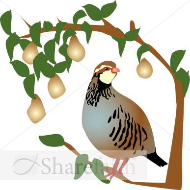 Partridge in a Pear Tree Clipart.