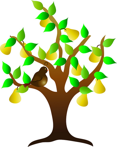 Clip Art Illustration of a Partridge in a Pear Tree at.