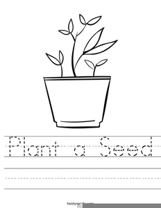 Parts Of A Plant Clipart Black And White.