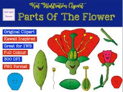 Parts of the flower clipart.