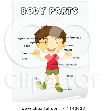 Boy With Labeled Body Parts 4 Posters, Art Prints by colematt.