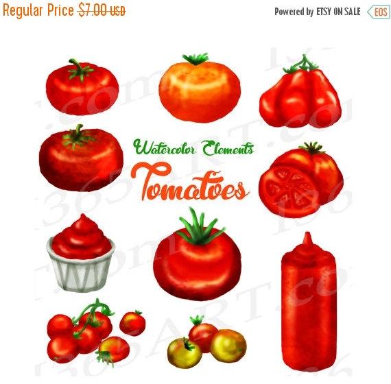 50% OFF Sale Tomato Clipart, Watercolor Tomatoes Clip art, Garden.