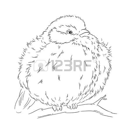62 Parus Stock Vector Illustration And Royalty Free Parus Clipart.