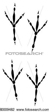 Stock Photo of DEU, 2006: Blue Tit (Parus caeruleus), footprints.