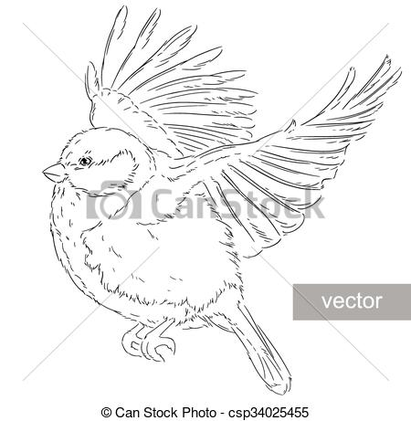 Clipart Vector of Blue Tit on a branch Parus caeruleus vector.