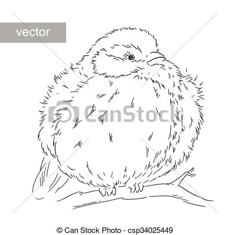 EPS Vector of Blue Tit on a branch Parus caeruleus vector.