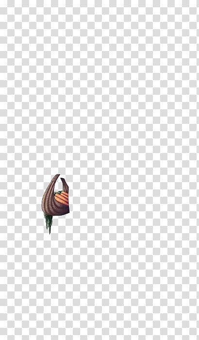 CDM Pascua , cesta de zanahorias icon transparent background.