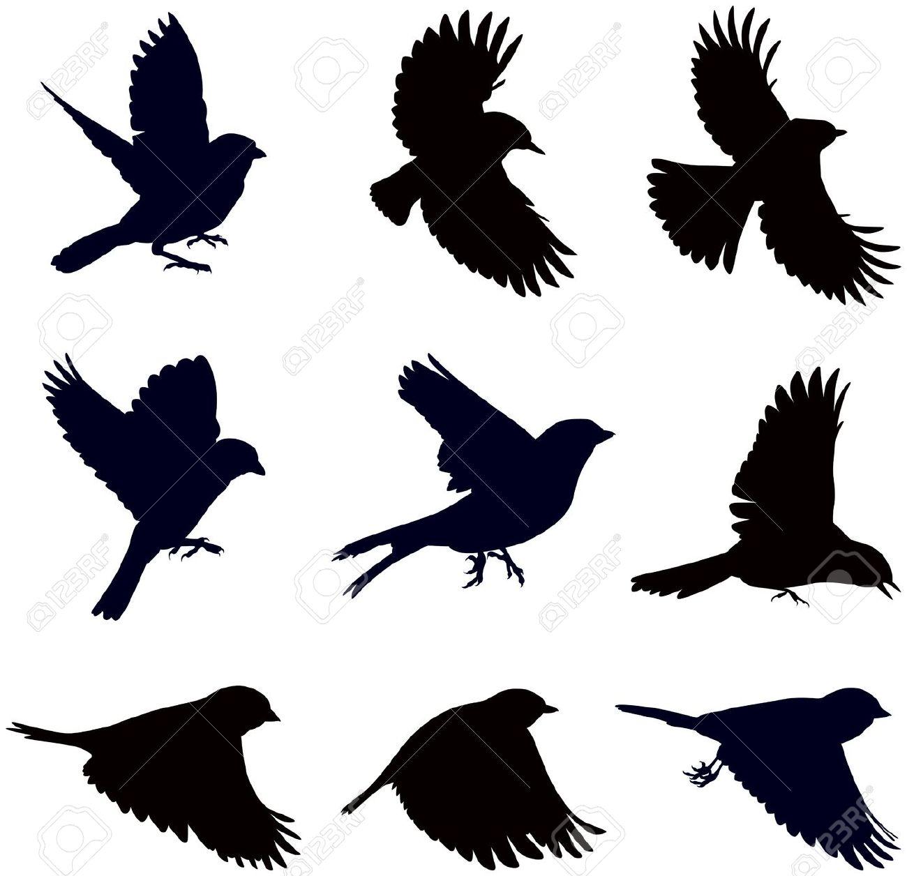 Sagome Di Uccelli, Passeri In Diverse Pose Clipart Royalty.