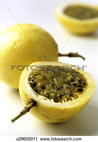 Stock Photography of Passion fruit (Passiflora edulis f.