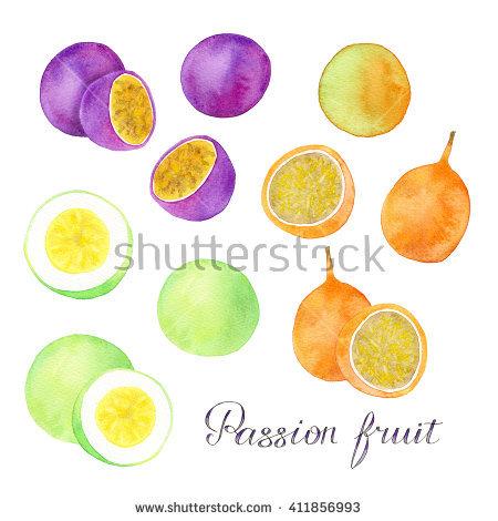 Passiflora Edulis Stock Photos, Royalty.
