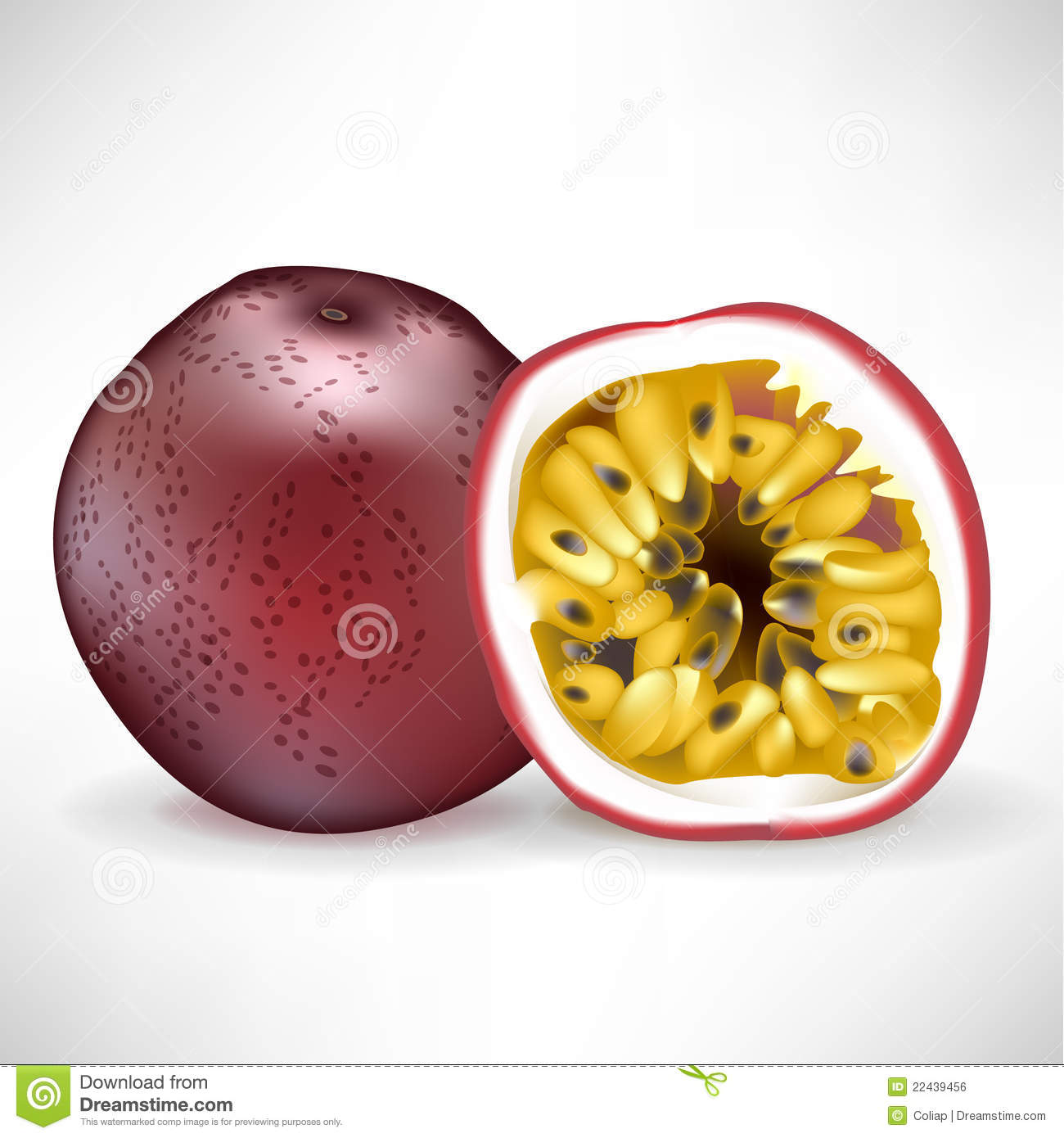 Passionfruit Stock Illustrations.