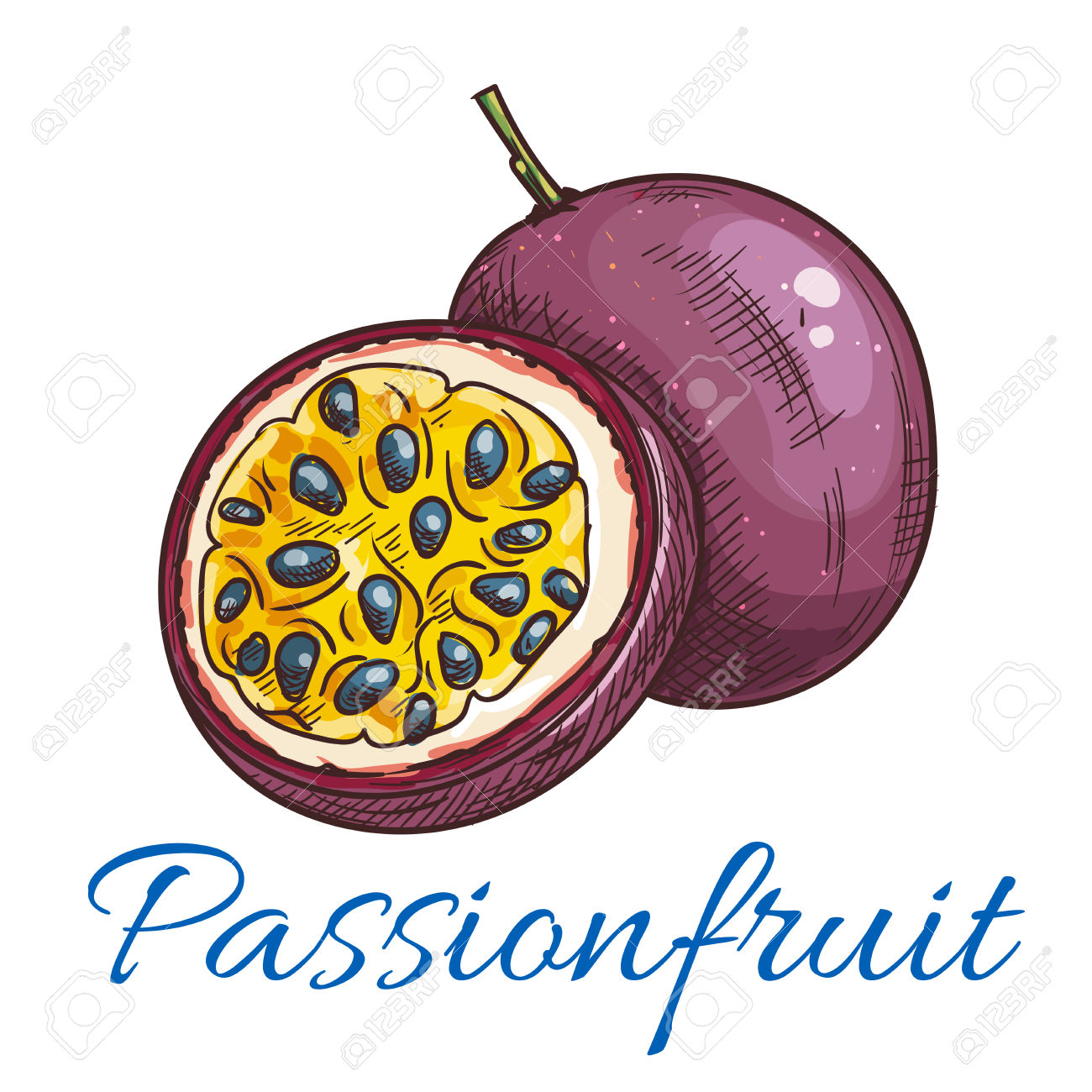 375 Passionfruit Cliparts, Stock Vector And Royalty Free.
