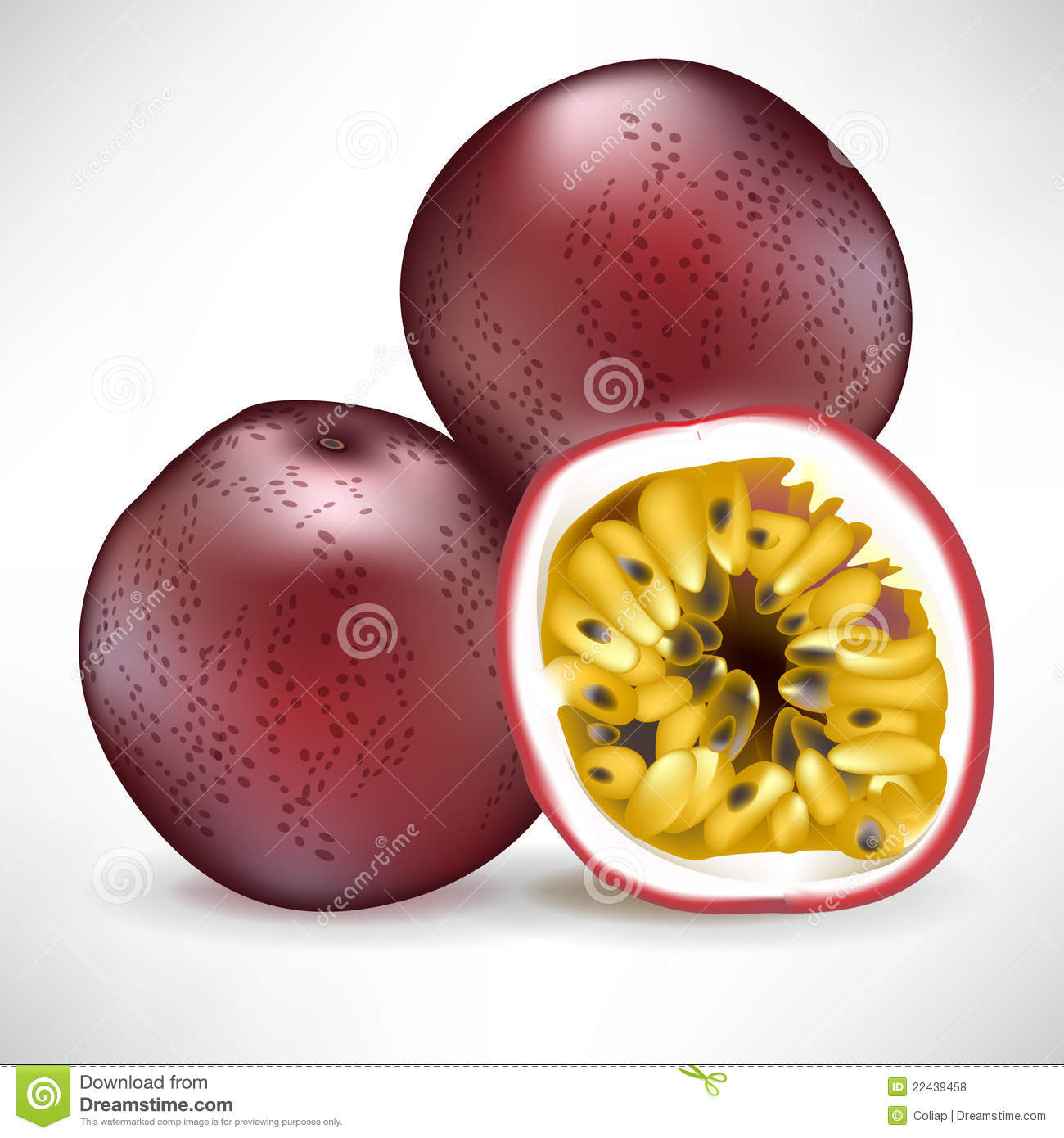 Passionfruit Stock Illustrations.