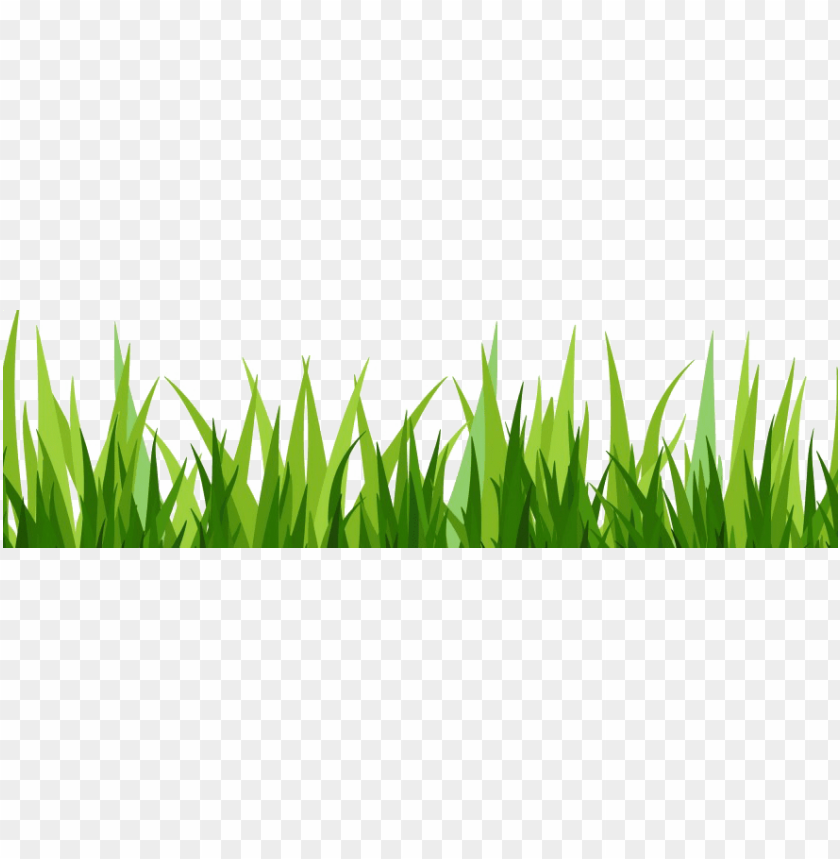 dibujo hierba png.