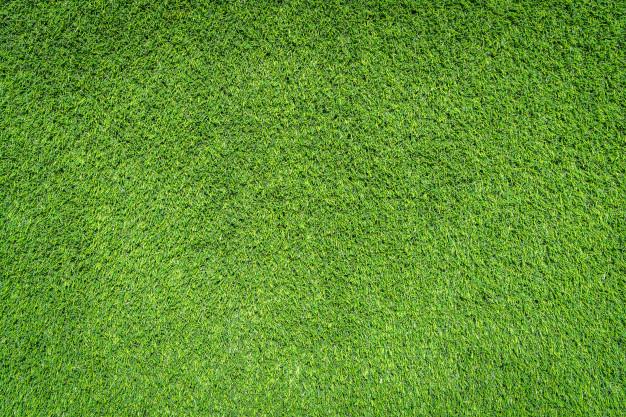 Green grass textures Photo.