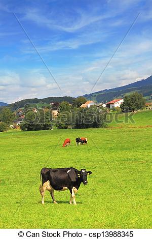Stock Photo of Charming pastoral scene in Southern France. Green.