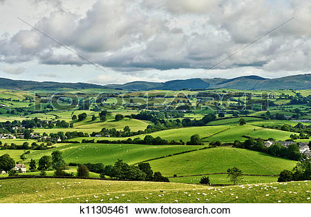 Stock Photography of Pastoral scene of lush green English farmland.