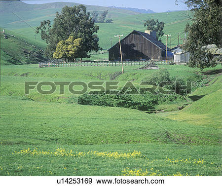 Stock Photograph of Pastoral scene at springtime u14253169.