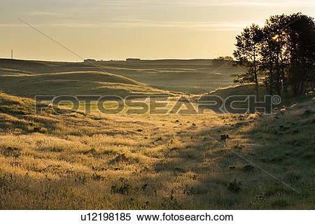 Stock Image of Pasture land, Alberta, Canada u12198185.